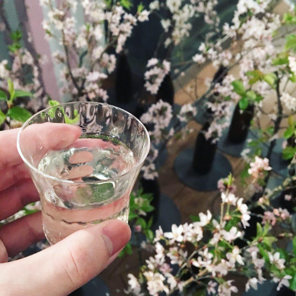 花よりお酒。