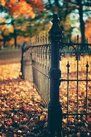 秋はどんなカラーにするか、迷ってませんか?